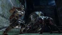 """Dark Souls II"""