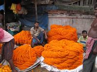 Marigolds en masse fill Kolkata's daily wholesale market. Photo courtesy of Barbara Selwitz.