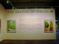 """Arrival of Spring"" at 1853 Gallery in Saltaire, Yorkshire, England, is a series David Hockney drew en plein air in East Yorkshire using an iPad to capture the fast-moving light.. Photo courtesy of Athena Lucero."