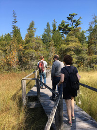 Knowledgeable guides take visitors around the Ridges Sanctuary in Door County, Wisconsin, where Lake Michigan's movement has created ridges and swales that are home to wild orchids and a variety of plant and animal species. Photo courtesy of Lesley Sauls.