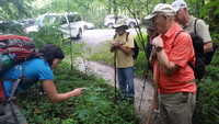Hikers in the Great Smoky Mountains National Park learn about native plants from guide Jamie Matzko. Photo courtesy of Bill Neely.
