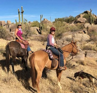 Diamond Buckle Adventures offers getaways in Arizona's Sonoran Desert for girlfriends as well as large groups. Photo courtesy of Diamond Buckle Adventures.