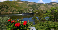 Cruises on the Douro River are a popular way for visitors to see the wine terraces in Portugal's Douro Valley. Photo courtesy of www.hansentravel.org.