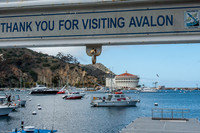 The art deco casino in Avalon on Catalina Island, California, remains the town's most iconic landmark. Photo courtesy of Kitty Morse.