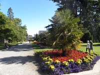 Hagley Park in Christchurch, New Zealand, attracts visitors and locals for walks through the manicured gardens. Photo courtesy of Bill Neely.