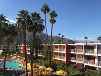 The colorful Saguaro hotel welcomes visitors to Palm Springs, California. Photo courtesy of Nicola Bridges.