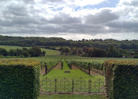 The original vineyard at Hambledon Vineyards, the UK's first commercial vineyard, is the only gravity-fed winery in the country. Photo courtesy of Athena Lucero.
