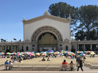 Donated to San Diego in 1914, the Spreckels Organ Pavilion has been providing grand music in a bright, sunny setting throughout the last century. Photo courtesy of Lesley Sauls.