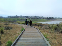 Three miles long roundtrip, Moonstone Beach Boardwalk is a popular spot for taking in the scenic beauty of Cambria, California. Photo courtesy of Athena Lucero.