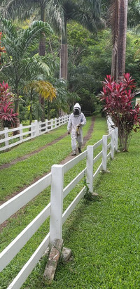 A beekeeper arrives to work at the Eden Wellness Farm in Grenada. Photo courtesy of Nicola Bridges.