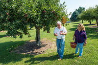. Visitors to an orchard on the Fields of Gold Farm Train in Virginia's Shenandoah Valley have the opportunity to pick their own fruit. Photo courtesy of Victor Block.