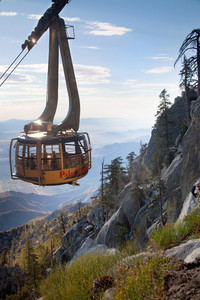 The Palm Springs Aerial Tramway in Palm Springs, California, takes visitors from the desert at the bottom to a pine forest at the top. Photo courtesy of Jim Farber.