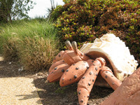 A sculpture of a hermit crab greets visitors to the Virginia Beach boardwalk area. . Photo courtesy of Candyce H. Stapen.