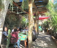 The Triunfo Cafe next to Museo Ruta de Plata in Triunfo, Baja California, Mexico, is worth the trip for its homemade bread and pizza in its wood-fired oven. Photo courtesy of Stuart Wasserman.