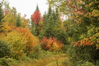 The fall foliage alone is reason enough to visit Rangeley, Maine. Photo courtesy of Jeffrey Halcombe/Dreamstime.com.
