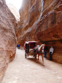 A horse-drawn carriage carries visitors through the Siq in route to Petra in Jordan. Photo courtesy of Phil Allen.