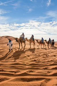 Members of an Overseas Adventure Travel tour group travel by camel in Morocco. Photo courtesy of Grand Circle Corp.