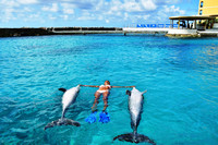 """A trainer demonstrates """"sunbathing"""" with dolphins at the Dolphin Academy, Curacao Sea Aquarium. Photo courtesy of Dolphin Academy."""