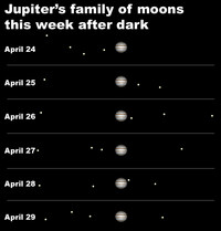 View Jupiter's family of moons after dark this week.