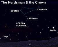View the Herdsman and the Crown after dark this week.