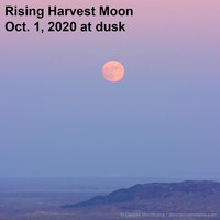 The harvest moon is the name given to the full moon that appears nearest the autumnal equinox.
