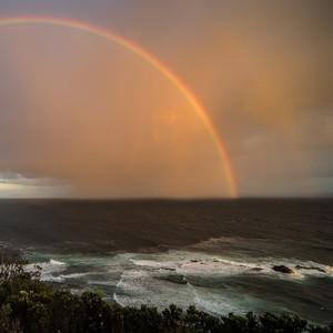 Rainbows Behind the Virus Crisis